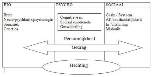 LVB Psychosociale risicofactoren