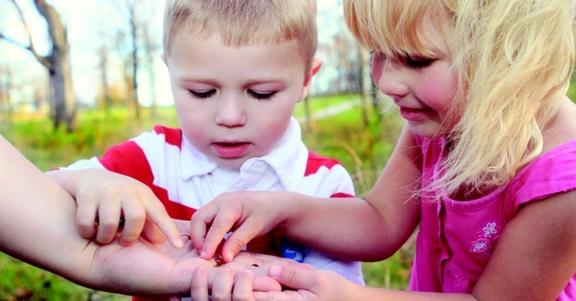 Kinderen in de natuur met beestjes op de hand