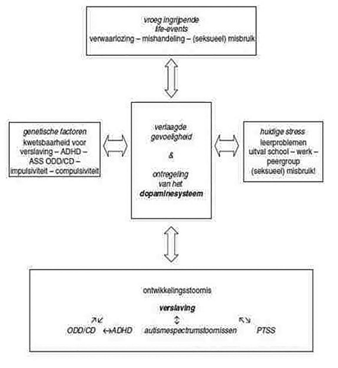 gen-omgeving-interactie