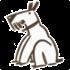 Risperidon afbeelding van hond
