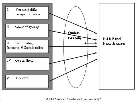 LVB AAMR-model