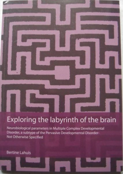 Cover Exploring Labyrinth Brain