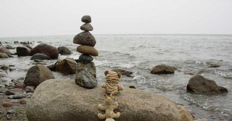 Knuffels op een rots naast de zee