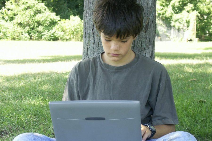 Jongen computeren boom