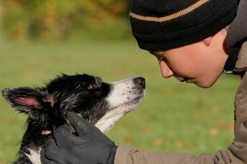 Jongen hond lief