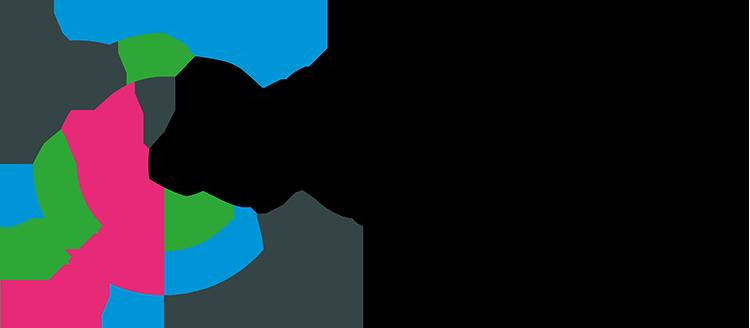 Het logo van Brainwiki.nl