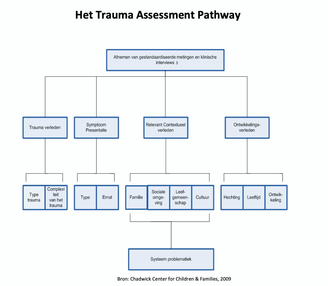 Trauma Assessment Pathway