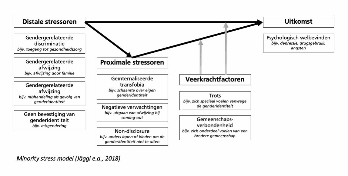 Genderdiversiteit - Jägr et al. 2018