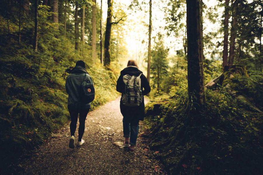 Vrienden Lopen in het bos